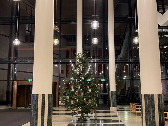 Bildet kan inneholde: belysning, julepynt, juletre, ferie, interiørdesign.